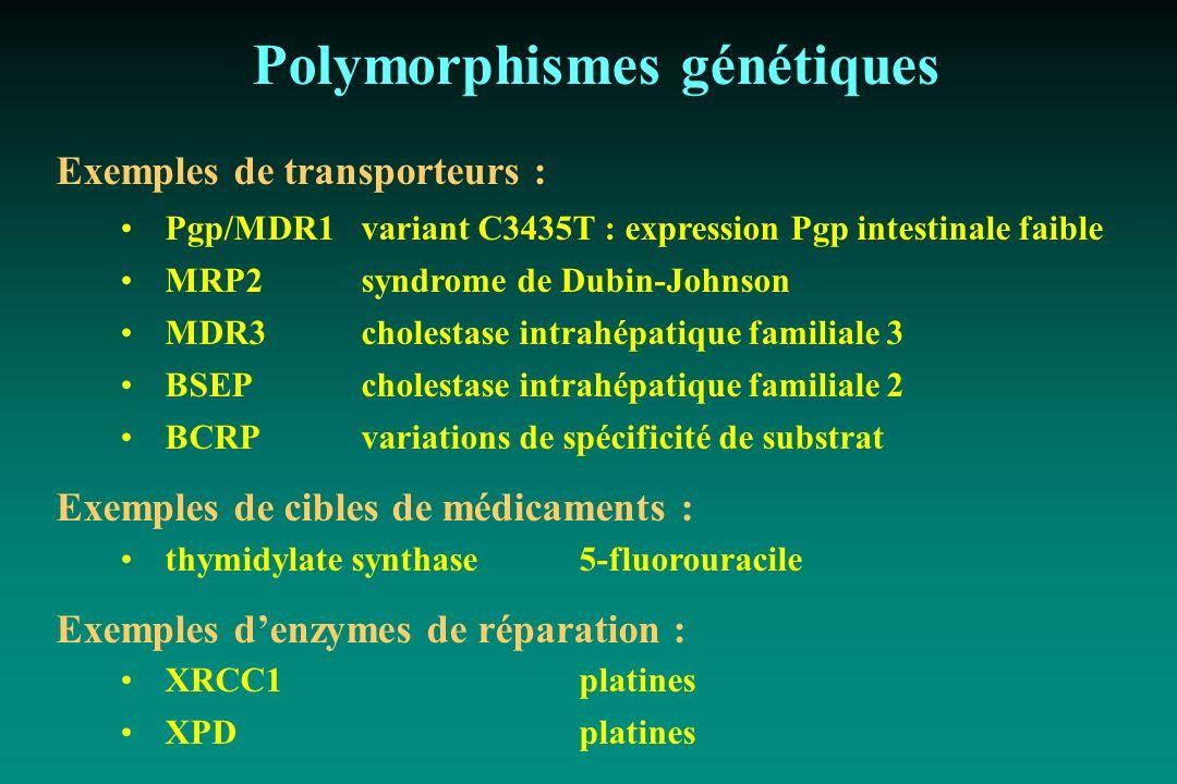 Polymorphismes génétiques