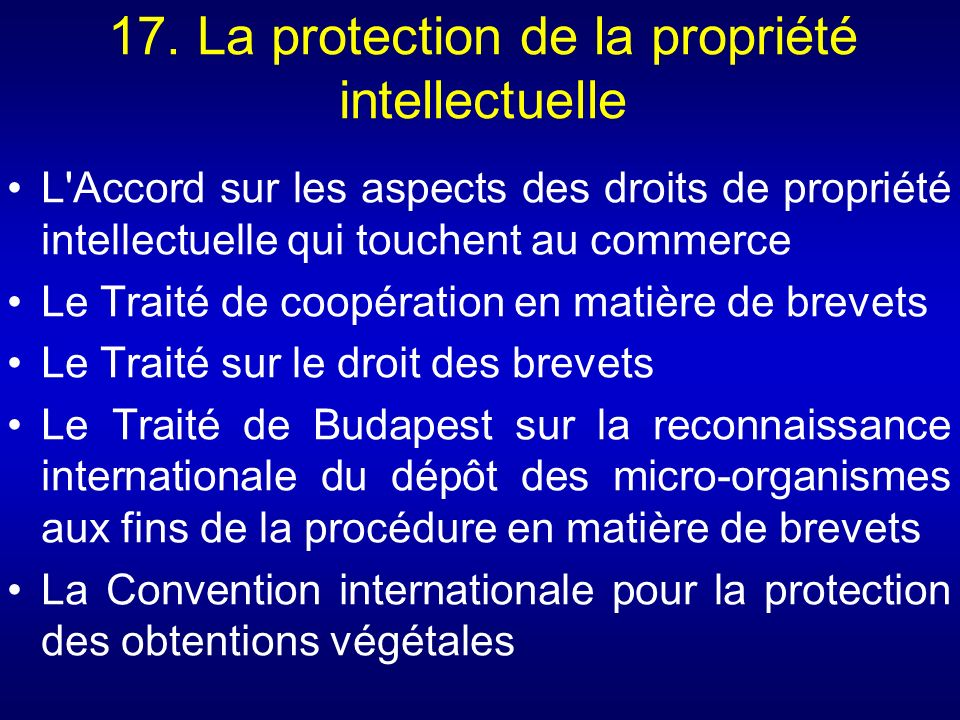 17. La protection de la propriété intellectuelle