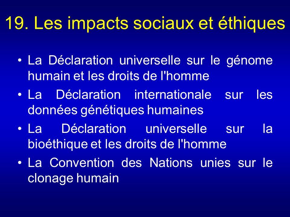 19. Les impacts sociaux et éthiques