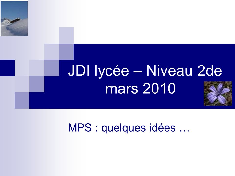 JDI lycée – Niveau 2de mars 2010