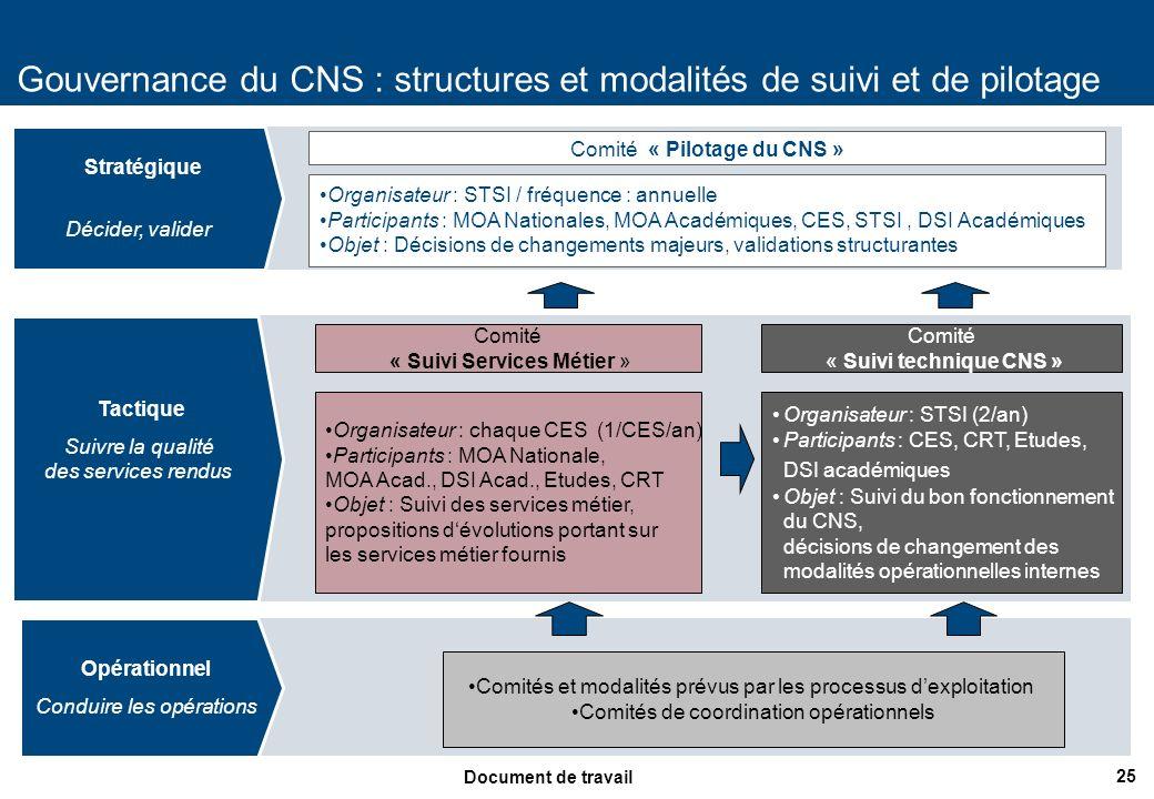 Gouvernance du CNS : structures et modalités de suivi et de pilotage
