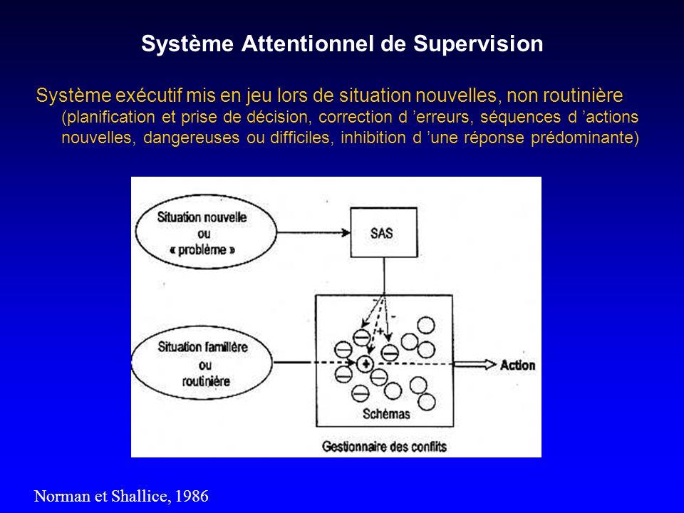 Système Attentionnel de Supervision