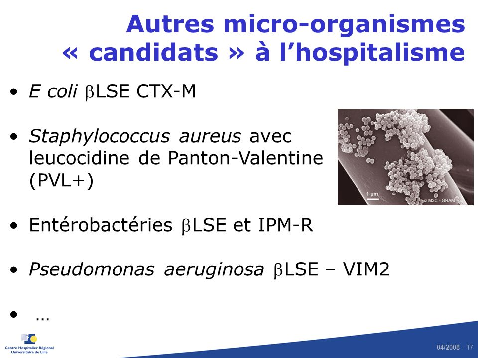 Autres micro-organismes « candidats » à l'hospitalisme