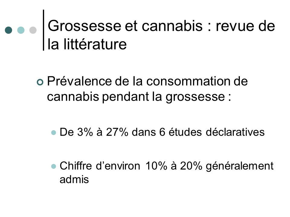 Grossesse et cannabis : revue de la littérature
