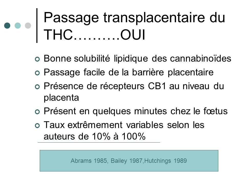 Passage transplacentaire du THC……….OUI