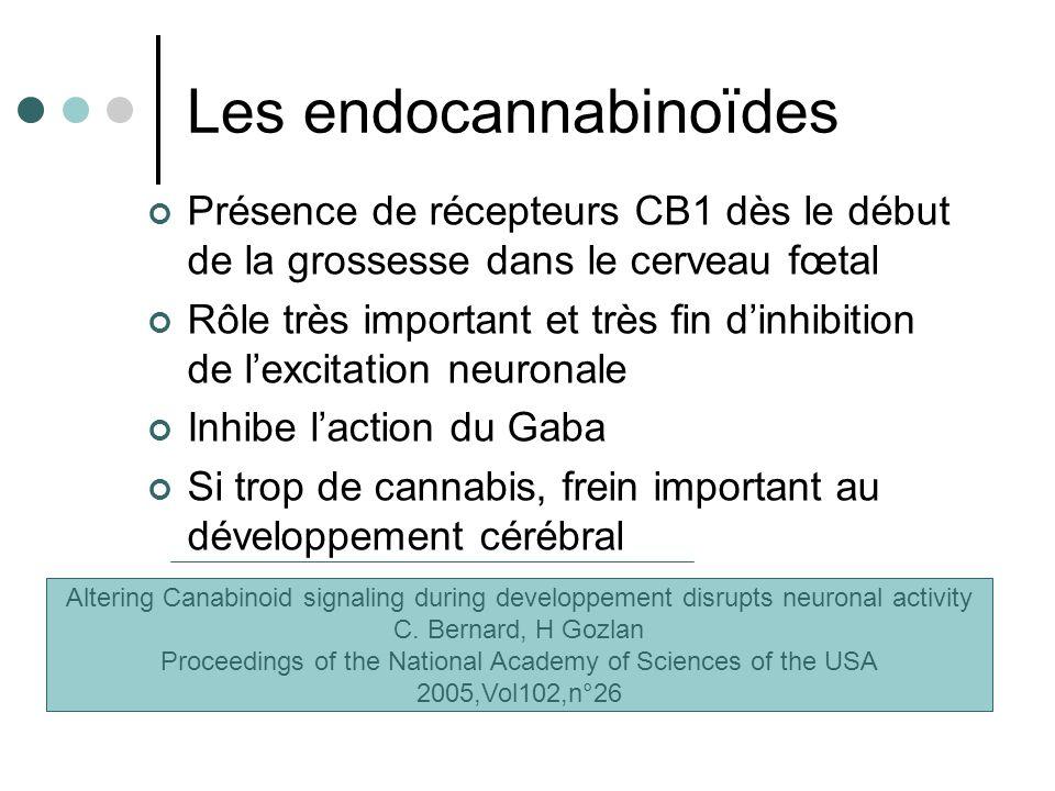 Les endocannabinoïdes