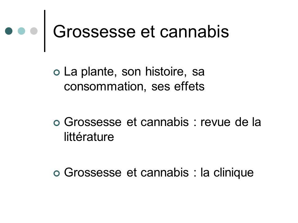 Grossesse et cannabis La plante, son histoire, sa consommation, ses effets. Grossesse et cannabis : revue de la littérature.