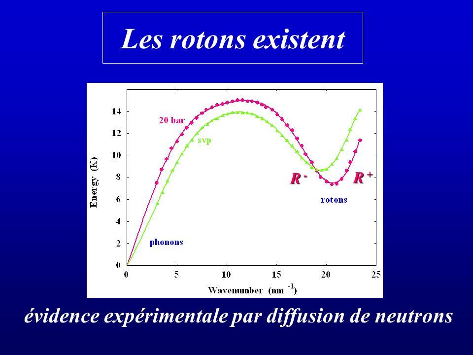 évidence expérimentale par diffusion de neutrons