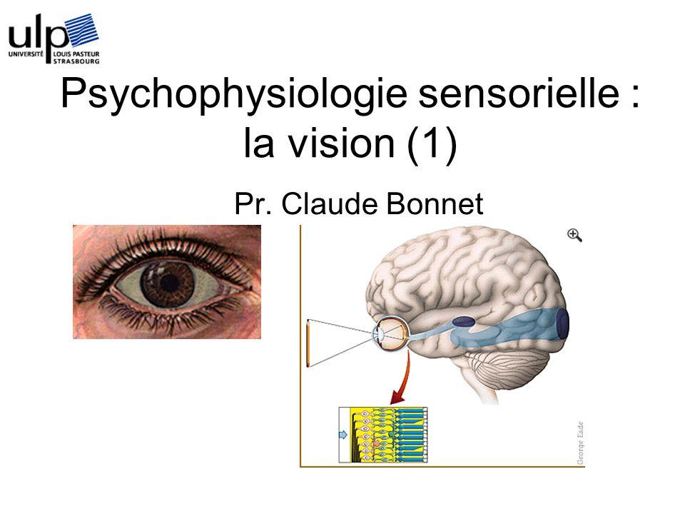 Psychophysiologie sensorielle : la vision (1)