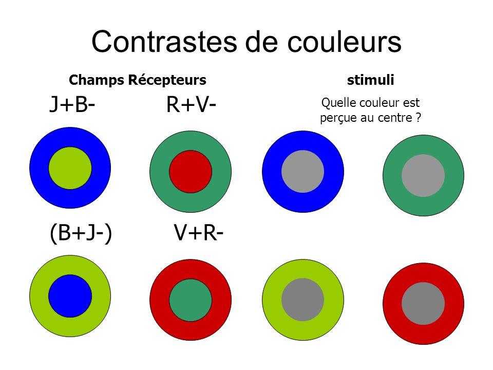 Contrastes de couleurs