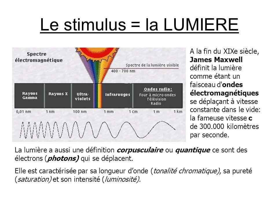 Le stimulus = la LUMIERE