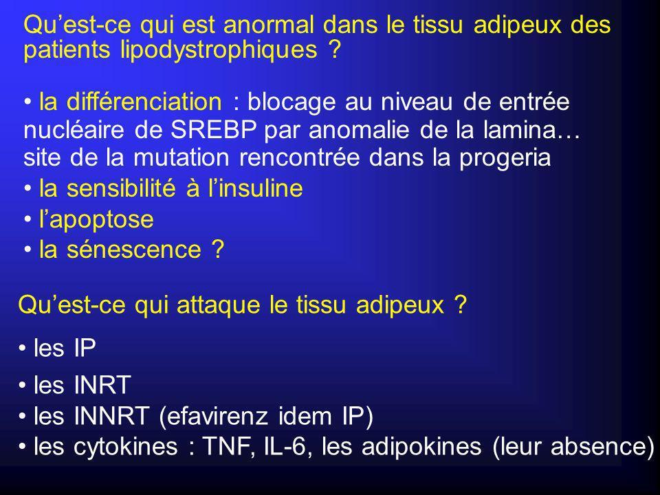 Qu'est-ce qui est anormal dans le tissu adipeux des patients lipodystrophiques