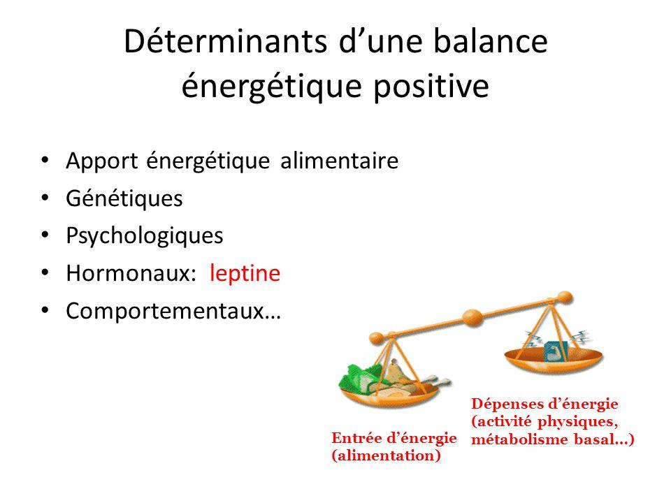 Déterminants d'une balance énergétique positive