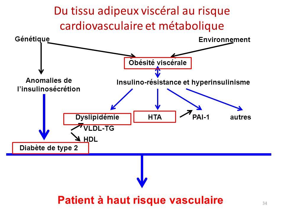 Anomalies de l'insulinosécrétion Patient à haut risque vasculaire