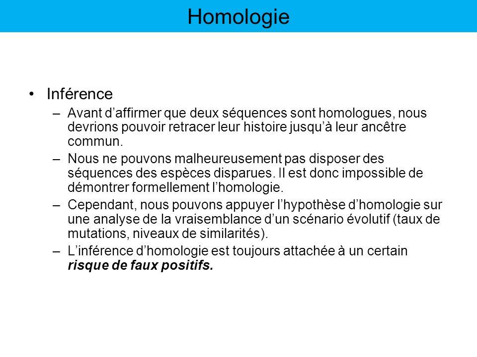 Homologie Inférence. Avant d'affirmer que deux séquences sont homologues, nous devrions pouvoir retracer leur histoire jusqu'à leur ancêtre commun.