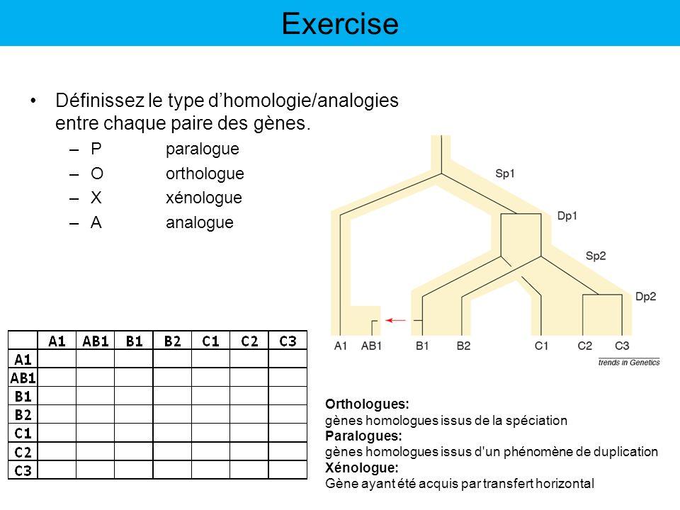 Exercise Définissez le type d'homologie/analogies entre chaque paire des gènes. P paralogue. O orthologue.
