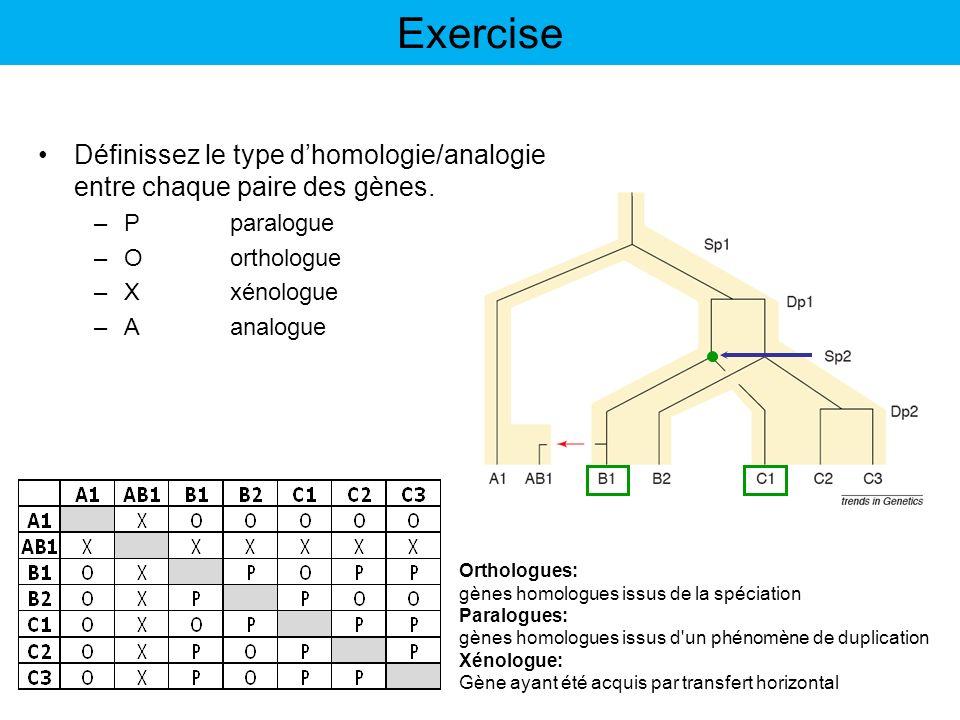 Exercise Définissez le type d'homologie/analogie entre chaque paire des gènes. P paralogue. O orthologue.