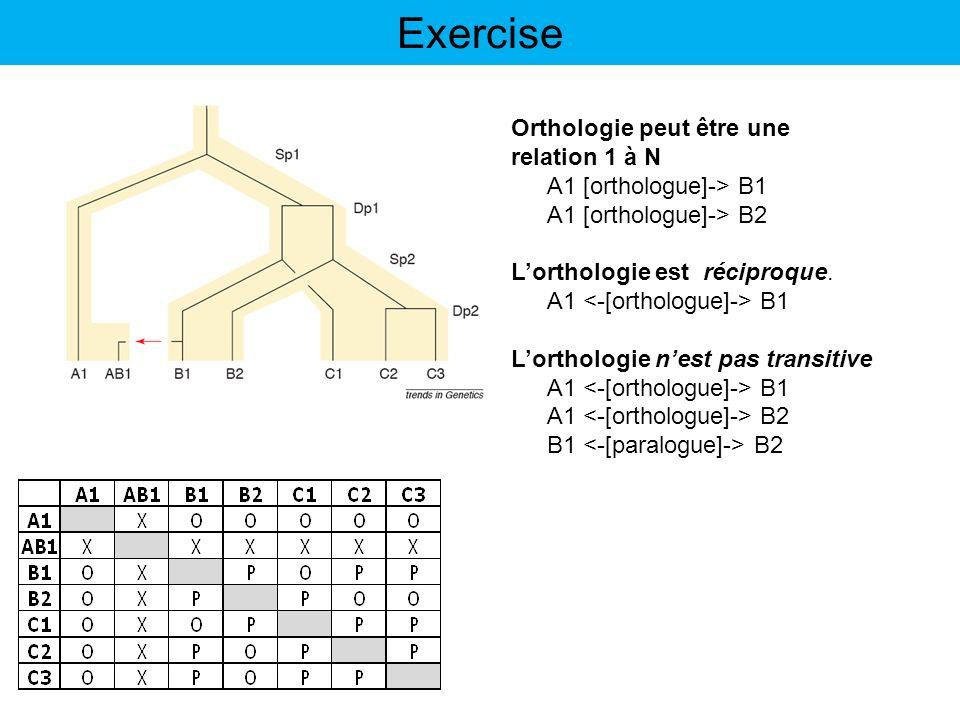 Exercise Orthologie peut être une relation 1 à N