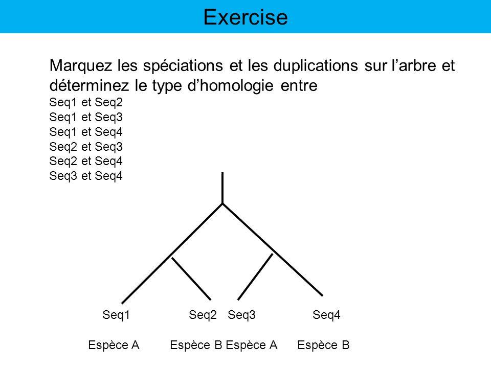 Exercise Marquez les spéciations et les duplications sur l'arbre et
