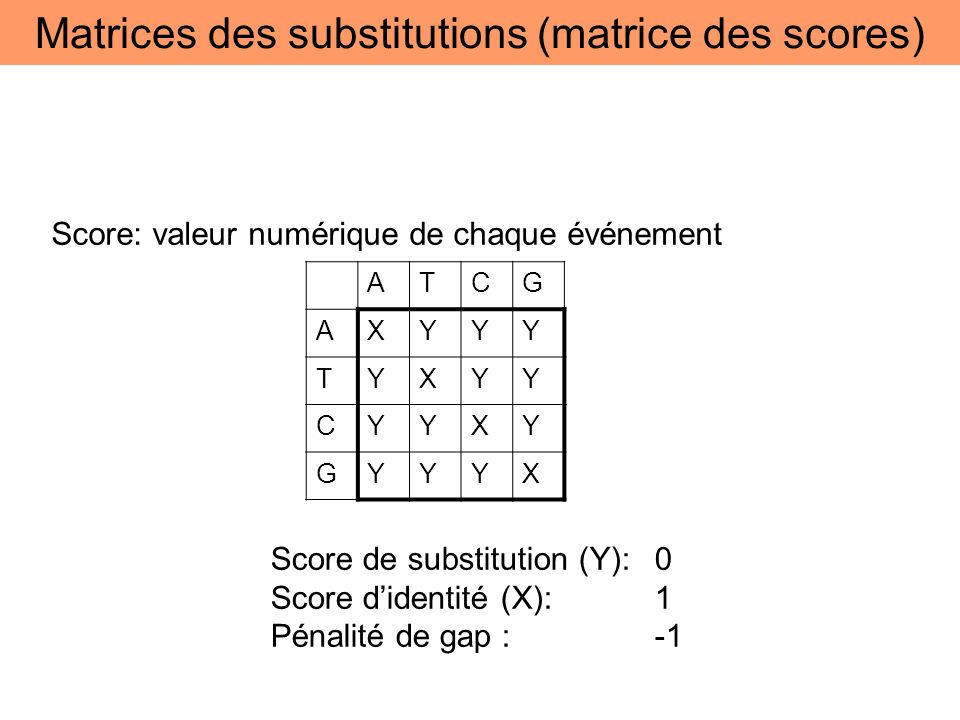 Matrices des substitutions (matrice des scores)