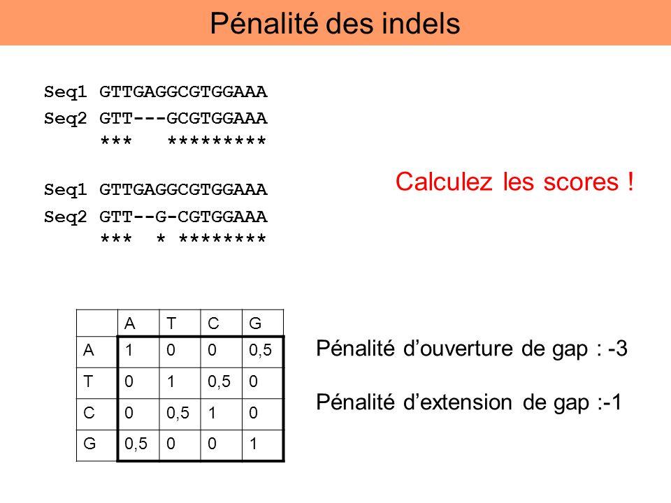 Pénalité des indels Calculez les scores !