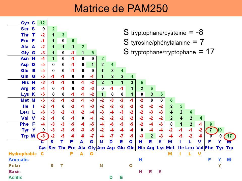 Matrice de PAM250 S tryptophane/cystéine = -8
