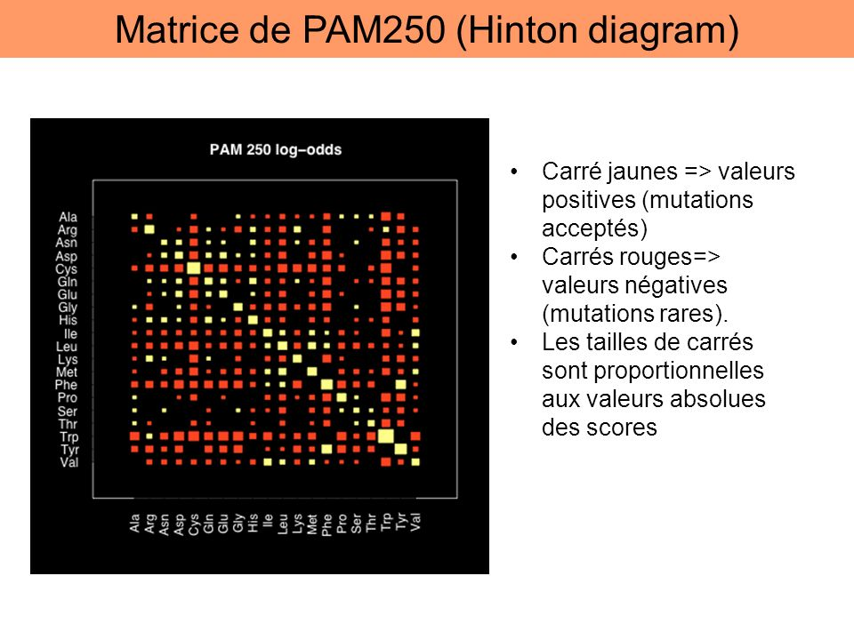 Matrice de PAM250 (Hinton diagram)
