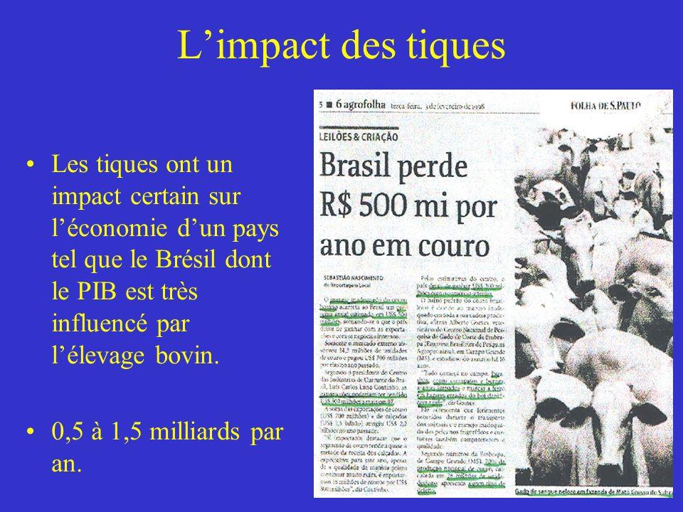 L'impact des tiques Les tiques ont un impact certain sur l'économie d'un pays tel que le Brésil dont le PIB est très influencé par l'élevage bovin.