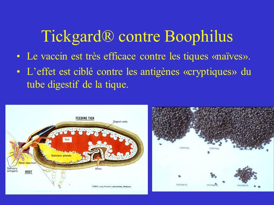 Tickgard® contre Boophilus
