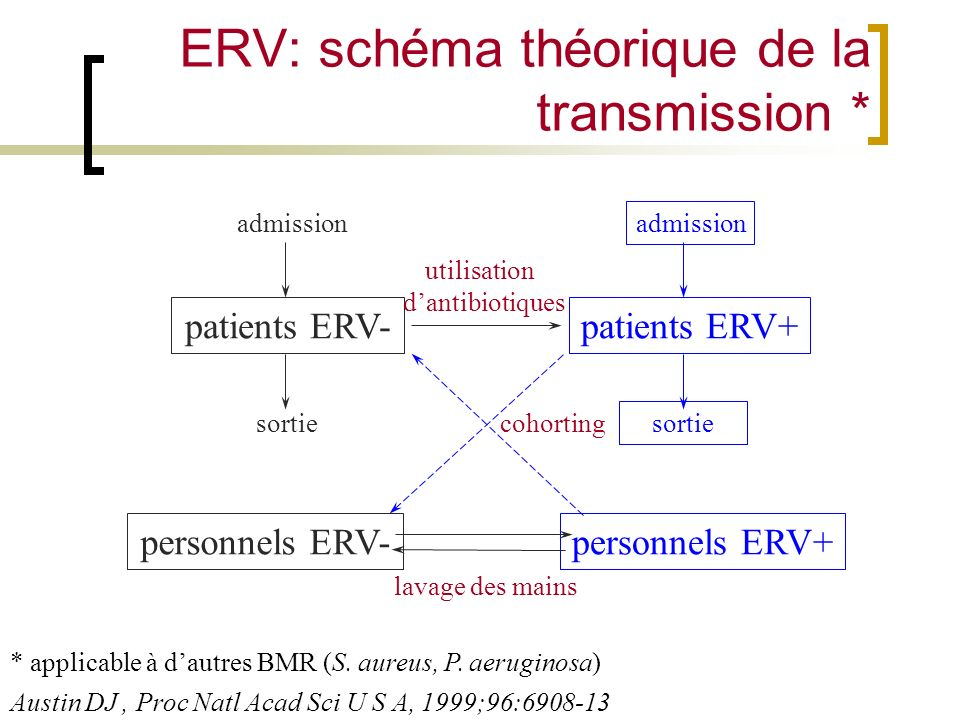 ERV: schéma théorique de la transmission *