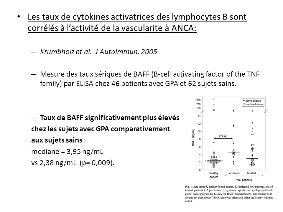 Les taux de cytokines activatrices des lymphocytes B sont corrélés à l'activité de la vascularite à ANCA: