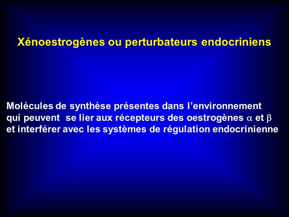 Xénoestrogènes ou perturbateurs endocriniens