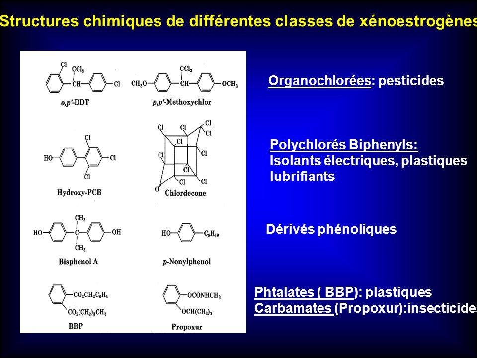 Structures chimiques de différentes classes de xénoestrogènes