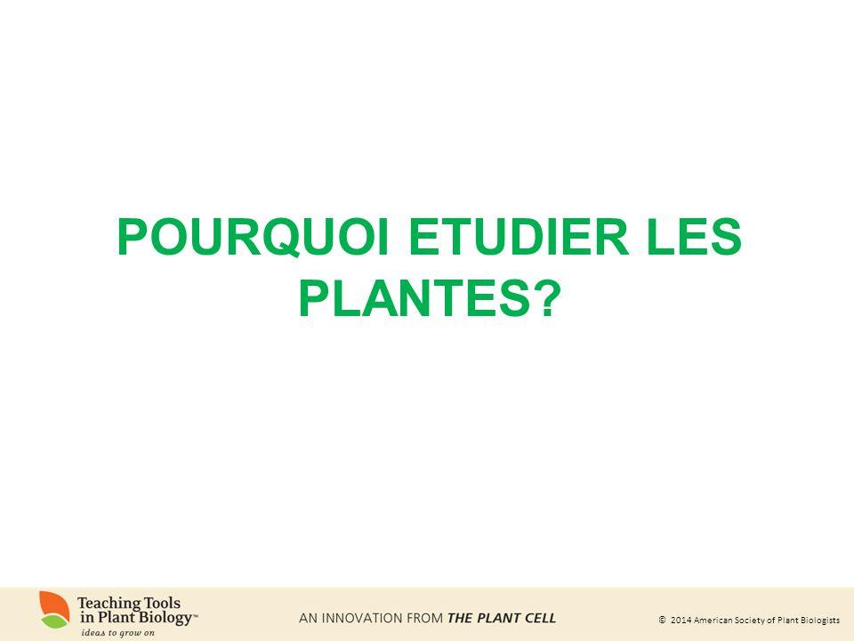 Pourquoi etudier les plantes