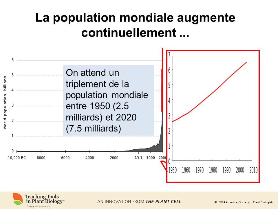 La population mondiale augmente continuellement ...