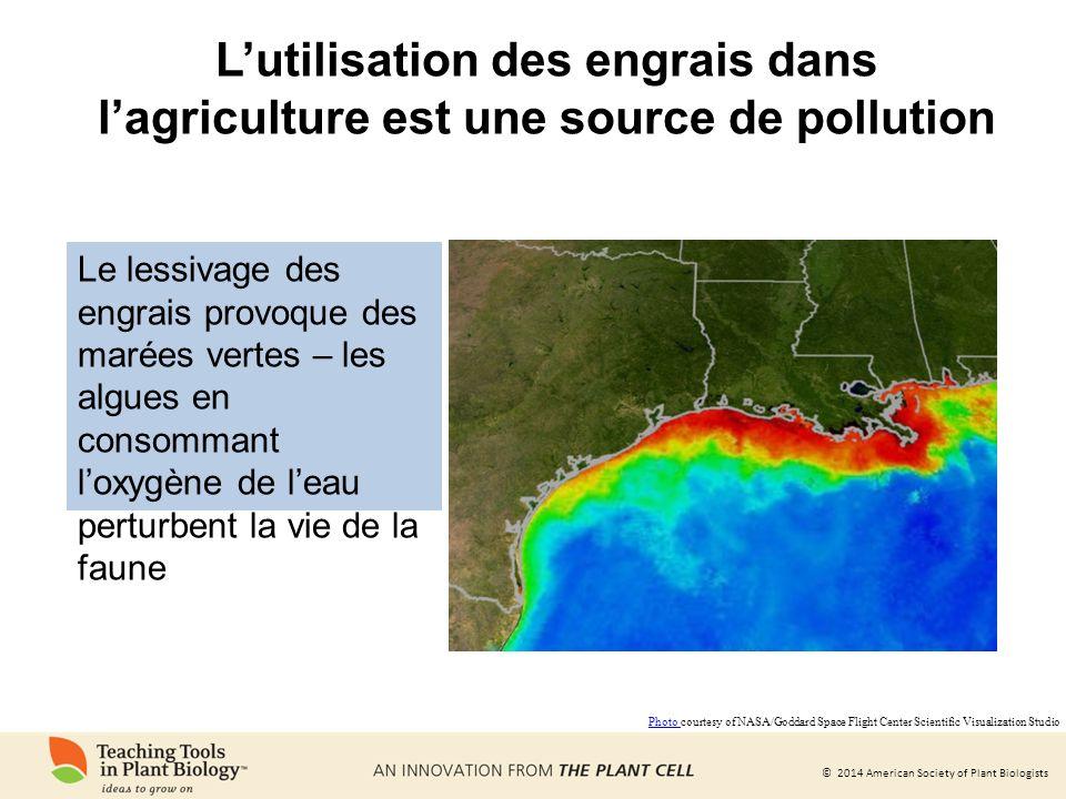 L'utilisation des engrais dans l'agriculture est une source de pollution