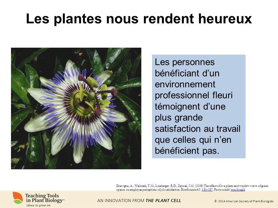 Les plantes nous rendent heureux