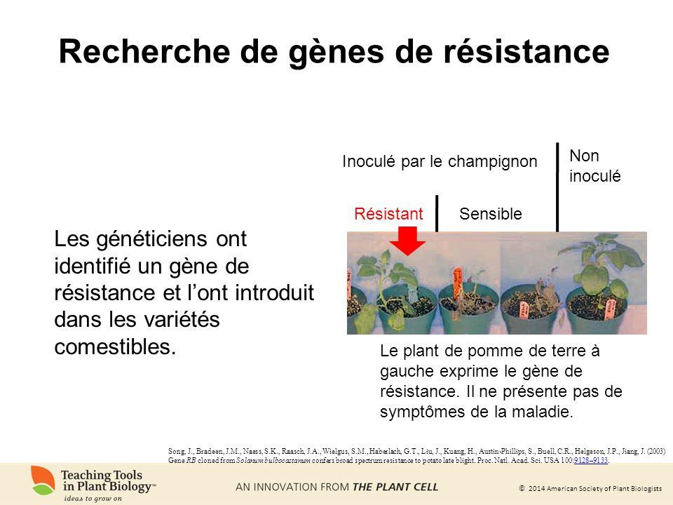 Recherche de gènes de résistance