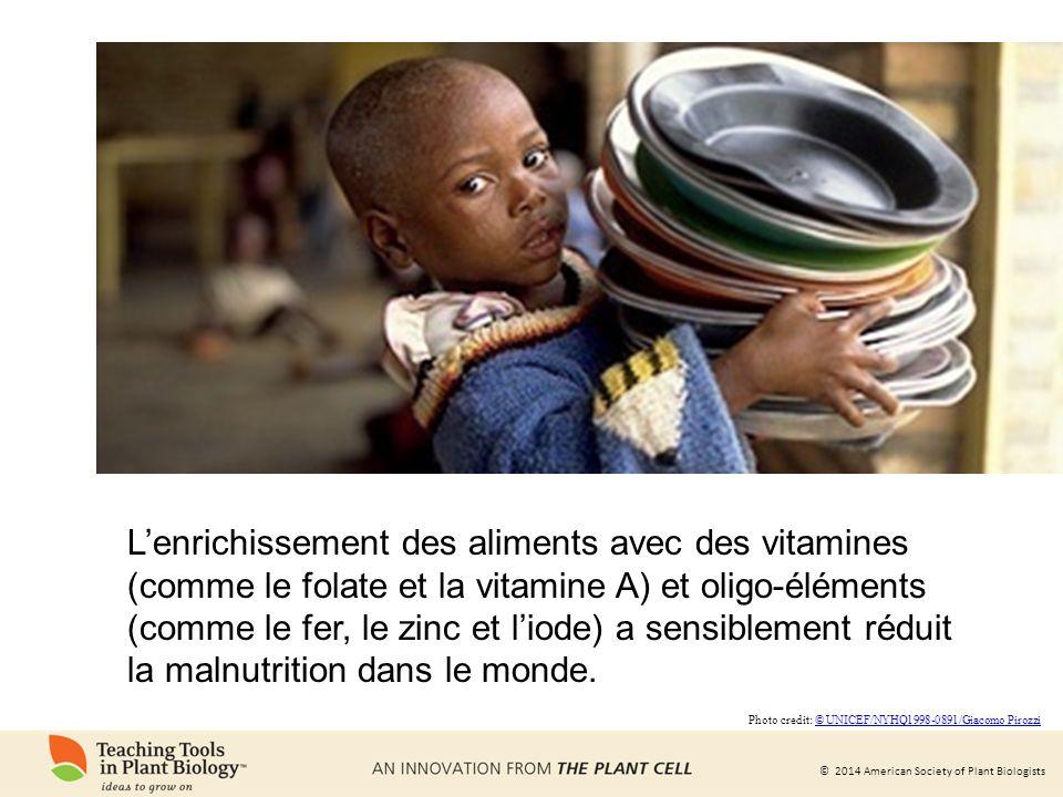 L'enrichissement des aliments avec des vitamines (comme le folate et la vitamine A) et oligo-éléments (comme le fer, le zinc et l'iode) a sensiblement réduit la malnutrition dans le monde.