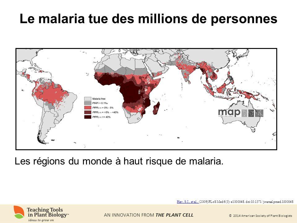 Le malaria tue des millions de personnes