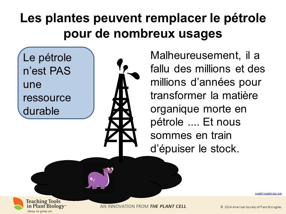Les plantes peuvent remplacer le pétrole pour de nombreux usages