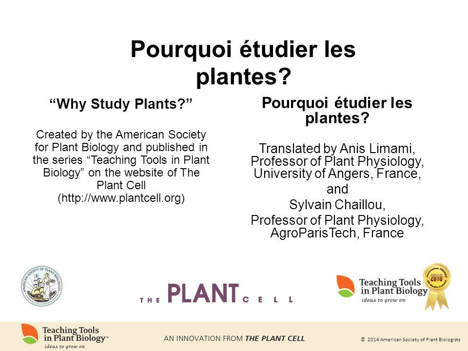 Pourquoi étudier les plantes Pourquoi étudier les plantes