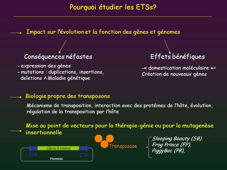 Pourquoi étudier les ETSs