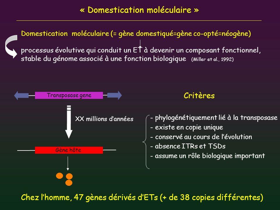 « Domestication moléculaire »