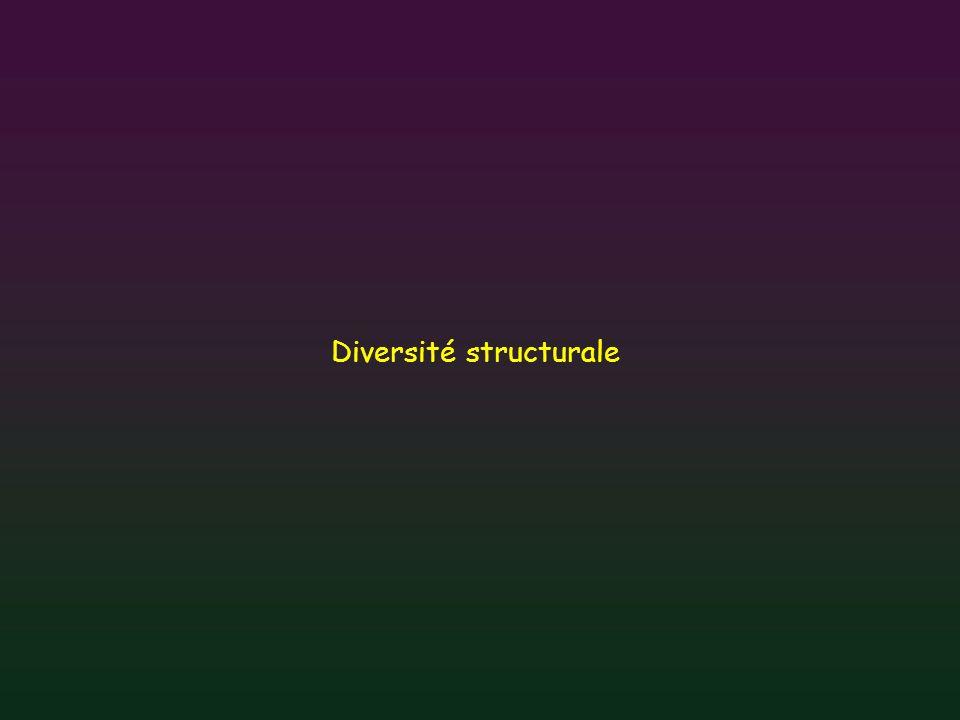 Diversité structurale