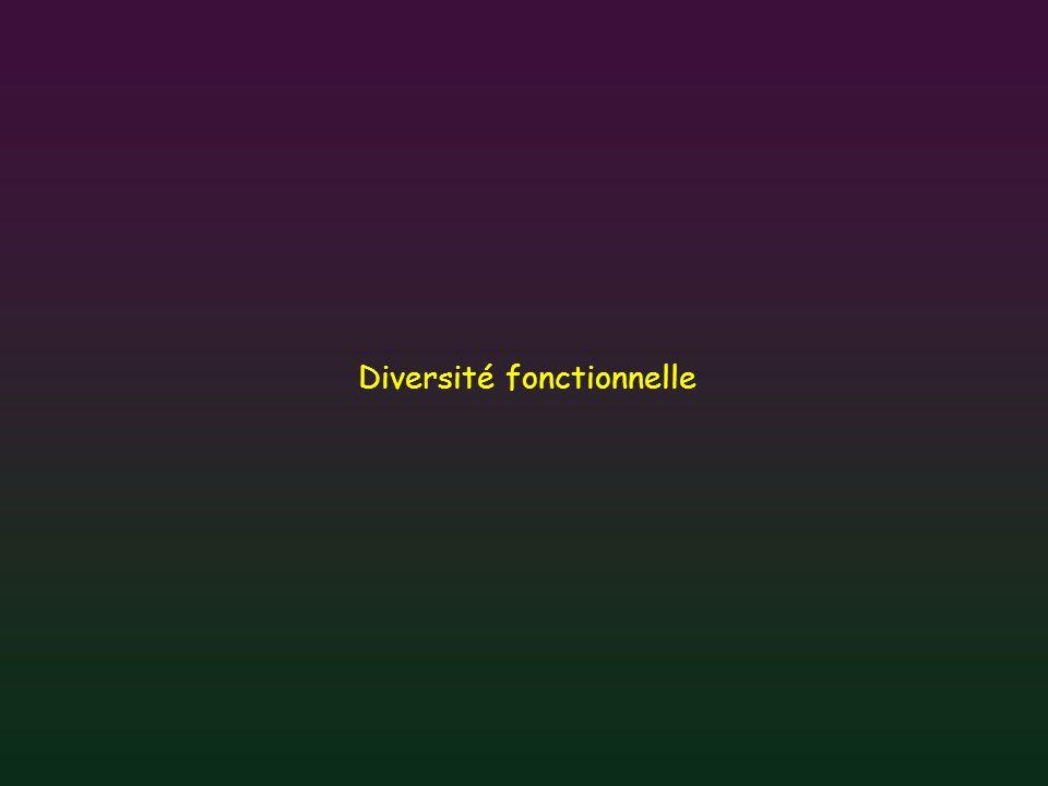 Diversité fonctionnelle