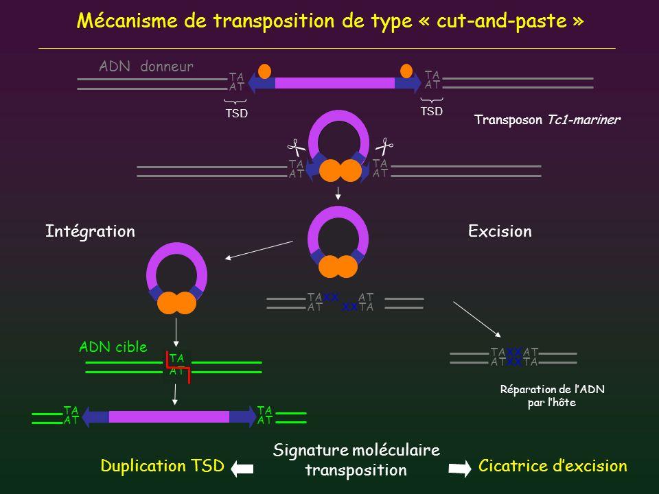 Signature moléculaire