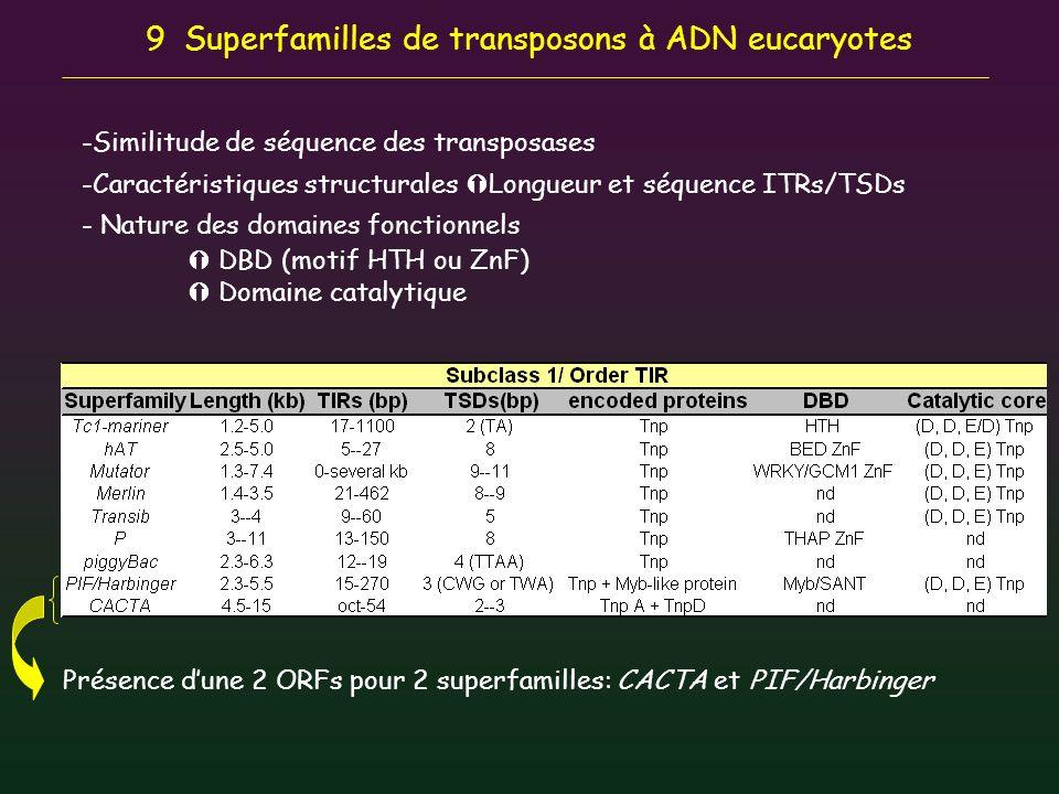 9 Superfamilles de transposons à ADN eucaryotes