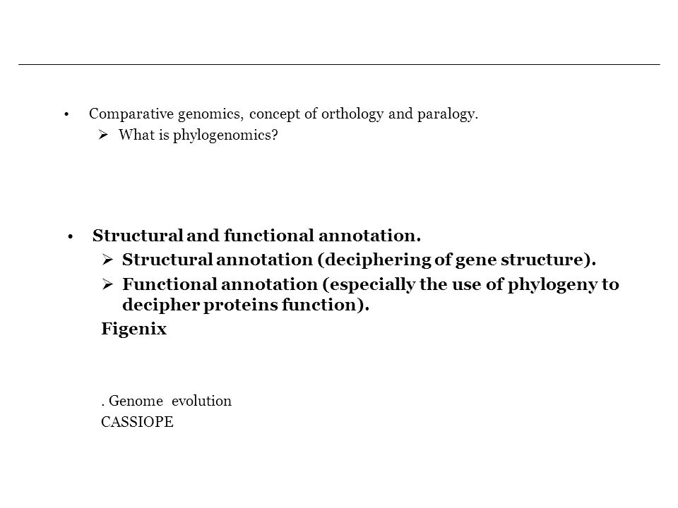 Structural and functional annotation.
