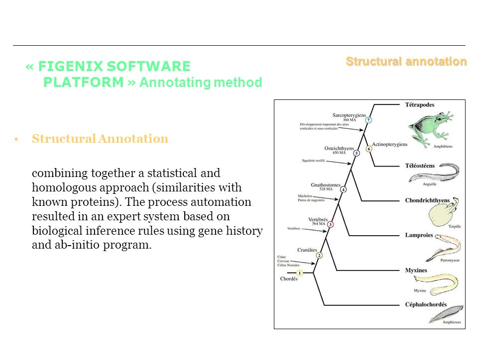 « FIGENIX SOFTWARE PLATFORM » Annotating method